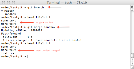 git merge two branches