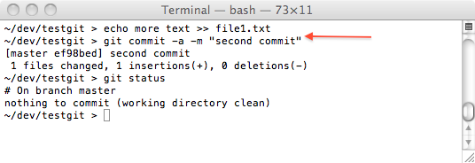 git one file committed a second time