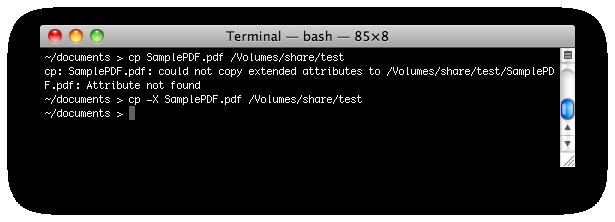 Terminal error on NAS